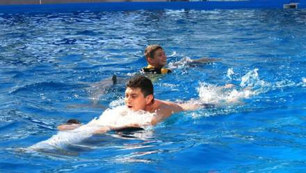 vip-swimming-with-dolphins-for-three-10-minutes-kharkov