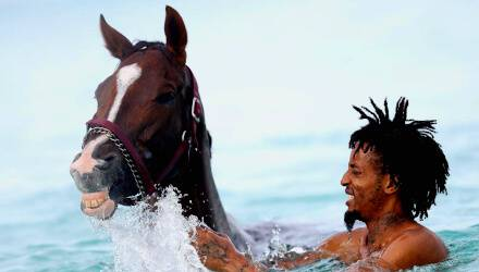 swimming-on-horses-odessa